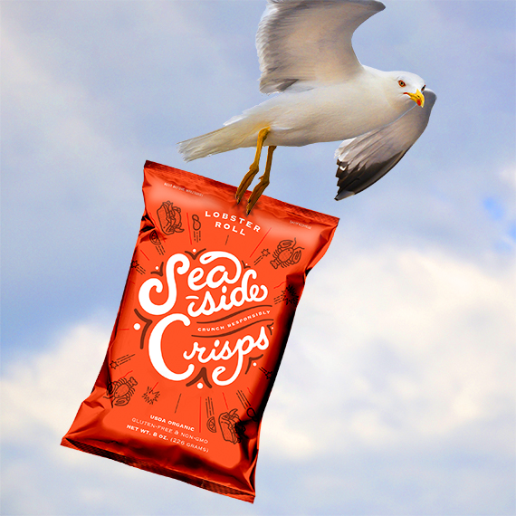 Potato chip packaging carried away by seagull