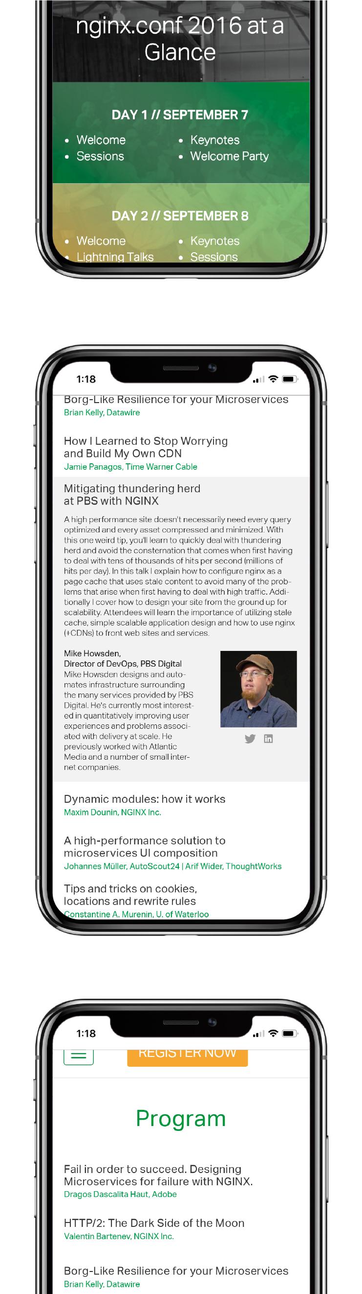 NGINX Austin website mobile responsive 3